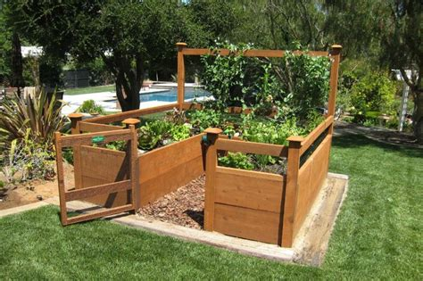 Gardens Vegetables And Amazons On Pinterest Vegetable Garden Kits For Sale