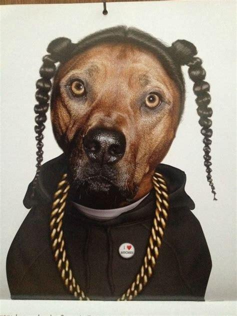 snoop dogg bathtub snoop dogg s dog funny dog costumes pinterest snoop
