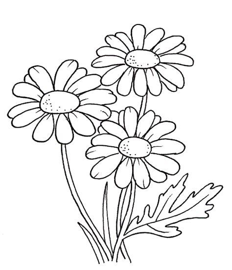 imagenes de flores grandes para pintar en tela plantas para colorear