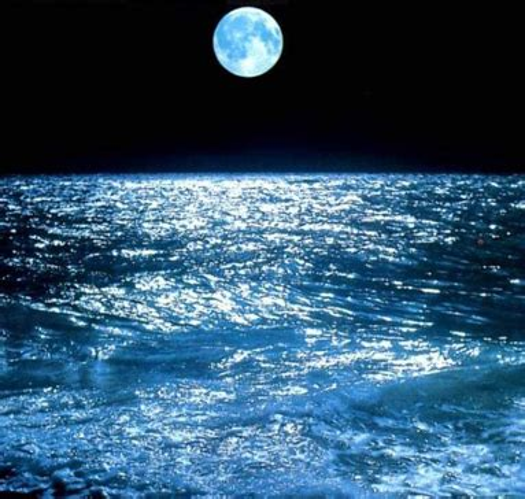 gli oceani si illuminano nel cuore della notte: il