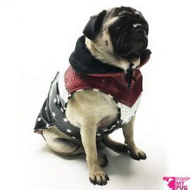 coats for pugs 17 best images about clothes for pugs on shops i and