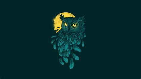 owl wallpaper hd iphone 6 owl minimalism wallpapers hd download free desktop hd