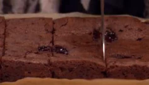 nadiya hussains brownies recipe   morning