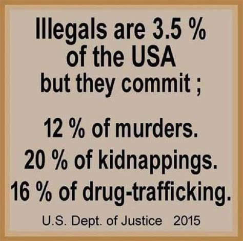 immigration illegal aliens and crime bookworm room