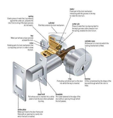 anatomy of door knob lock 1000 images about anatomy of things on