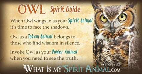 owl symbolism pure spirit owl symbolism meaning spirit totem power animal