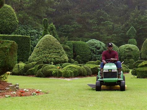 pearl fryar s topiary garden a cut above average diy