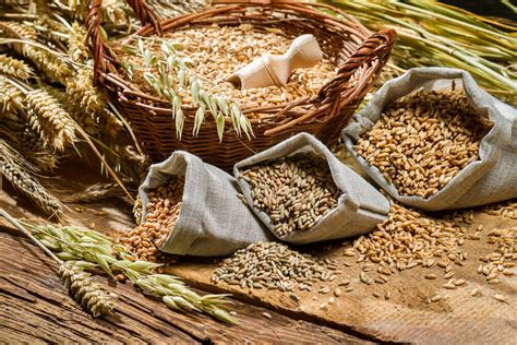 whole grains for the 5 best whole grains for weight loss the better yoo