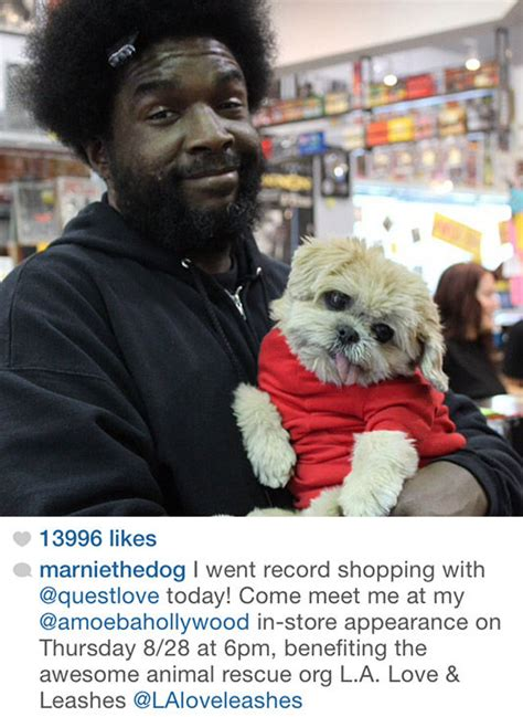 Creative Quest By Questlove Instagram Can T Get Enough Of Marnie The Adorable