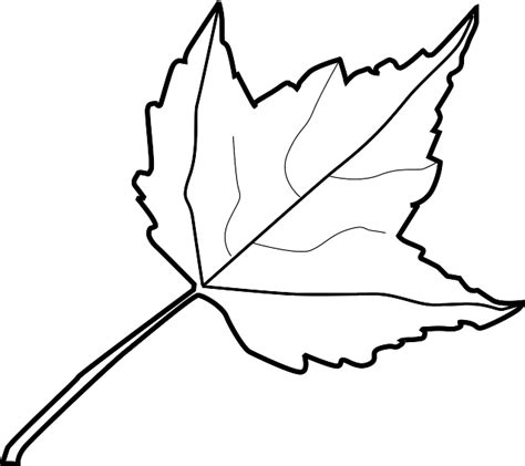 Outline Of A Pumpkin Leaf by Fall Leaf Clipart Black And White Outline Clipartxtras