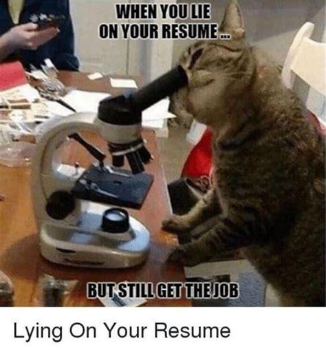 lie   resume     job  pics