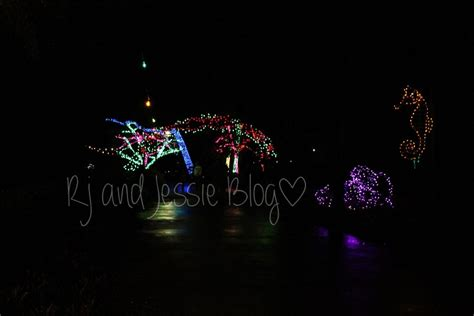 rj and jessie sunday snapshot zoo lights at the