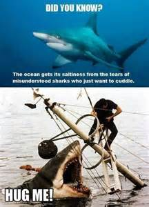 Sad Shark Meme - sad crying sharks funny pictures quotes memes jokes