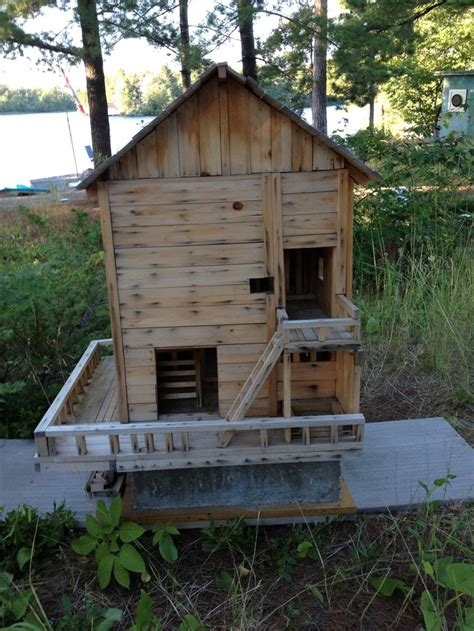Squirrel Houses Plans 17 Best Images About Squirrels On Exploring Raising And Backyards