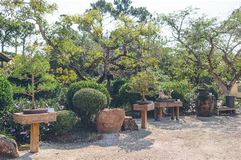 Morikami Gardens by Gardens Morikami Museum And Japanese Gardens