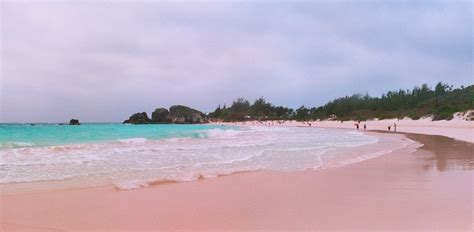 beaches with pink sand the most beautiful pink sand beaches in the world purewow