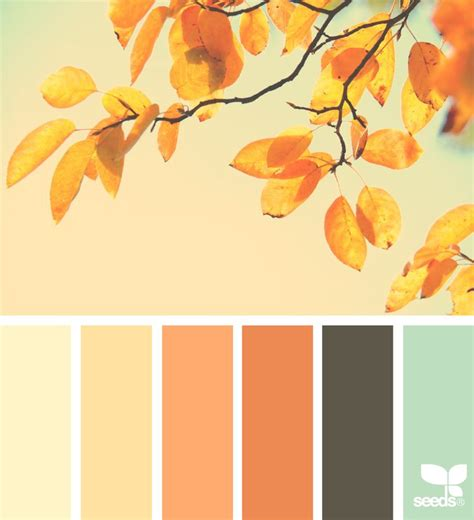 fall color schemes 25 best ideas about autumn color palette on pinterest