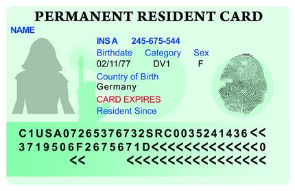 bug on america s green card lottery expat news easyexpat