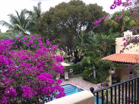 bed and breakfast west palm beach grandview gardens bed breakfast 41 photos 11 reviews