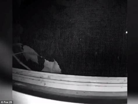 peeping in bedroom peeping tom caught on film outside boston woman s bedroom