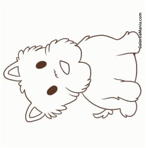 imagenes para colorear un perro colorear perro west highland bebe animales domsticos