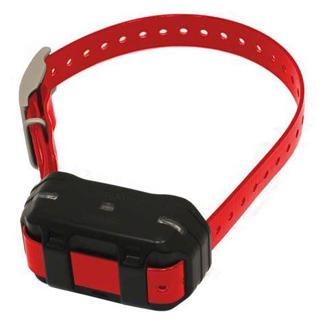 garmin collars pro 550 additional collar garmin tri tronics pt10 149 99 free shipping us48