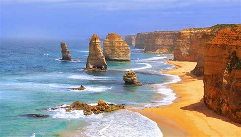 gold wallpaper melbourne top 10 pet friendly destinations to visit in australia