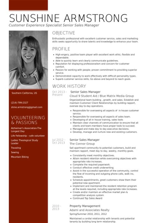 Resume Sles Senior Management Senior Sales Manager Resume Sles Visualcv Resume