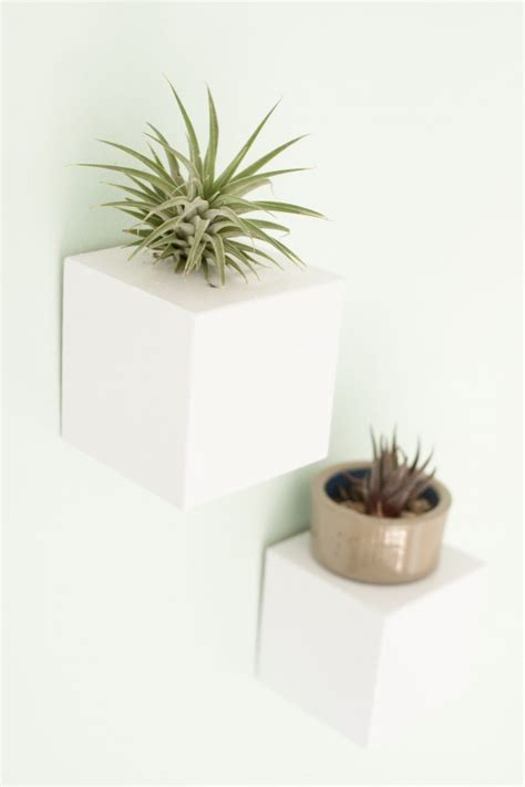 wall mounted plant holder this week on ehow wall mounted plant stands 187 dream green diy