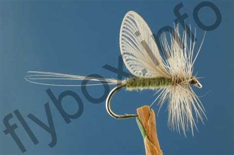 Winged Origami - origami winged olive fly fishing flies with fish4flies