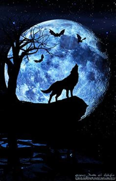 1000+ ideas about wolf moon on pinterest | wolves, three