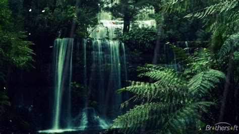Em62 Protector free active animated jungle wallpapers awesome 40 active