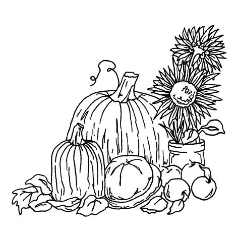 autumn harvest coloring pages fall harvest coloring pages coloring page kids