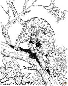 Tiger In A Jungle Coloring Page  SuperColoringcom sketch template