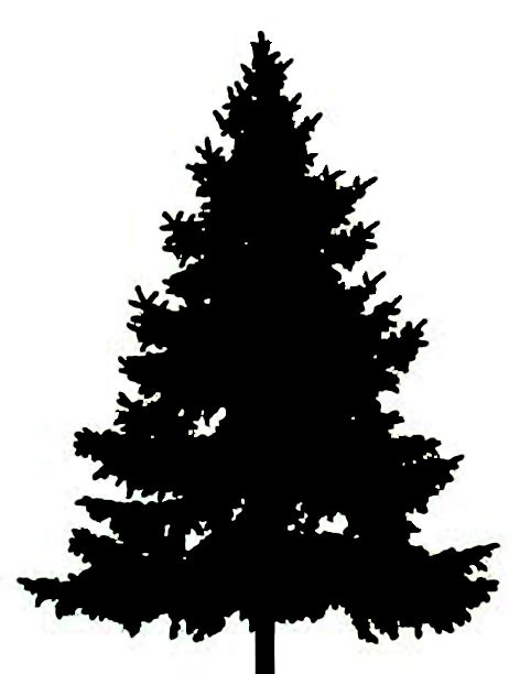 fir tree silhouette clipart best