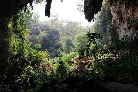 wisata goa jomblang gunung kidul  yogyakarta wikipiecoid
