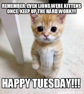 Happy Tuesday Meme - meme creator remember even lions were kittens once