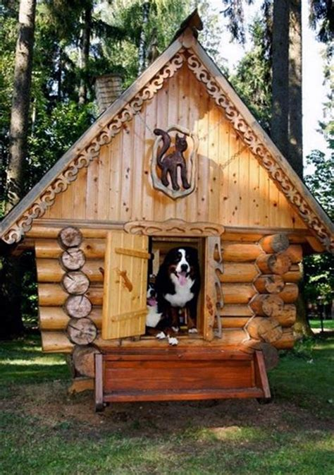 cool house dogs 25 best ideas about cool dog houses on pinterest pet houses unique dog beds and
