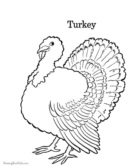 Turkey Thanksgiving Coloring Book Pages 019 Thanksgiving Coloring Book Pages