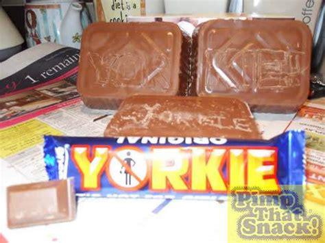 my yorkie ate chocolate pimp that snack yorkie 1