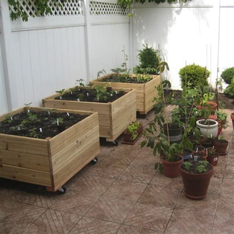 vegetable garden boxes container gardening growing vegetables in planters
