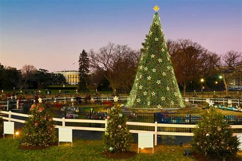 live national christmas tree lighting ceremony 2014