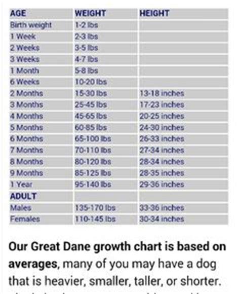 pug growth chart great dane growth chart tabla de crecimiento gran dan 201 s great danes