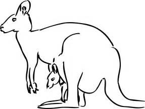 kangaroo coloring page printable kangaroo coloring pages coloring me