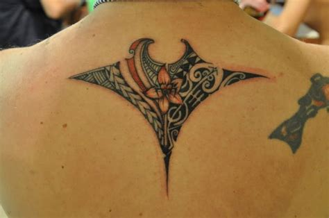 manta ray tattoo designs 25 best ideas about manta tattoos on