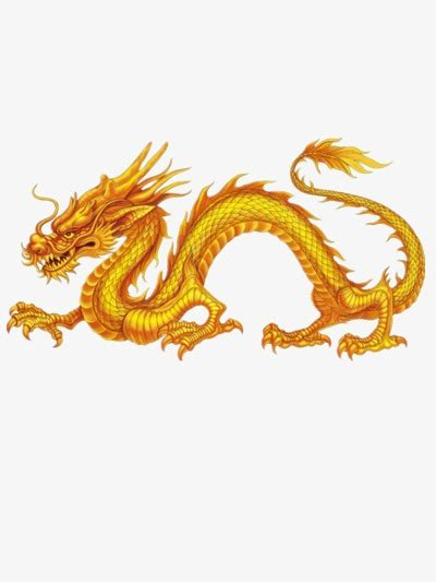 Valentines Day Decoration Golden Chinese Dragon Chinese Style Dragon Golden Png