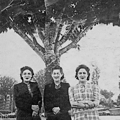 familia rosas wwwgenealogcl familia garc 237 a www genealog cl
