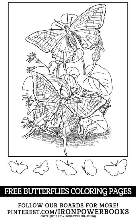 coloring pages free for commercial use 1000 images about coloring pages on pinterest