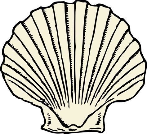 Shell Outline by Scallop Shell Clip At Clker Vector Clip Royalty Free Domain