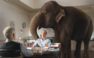what does the elephant in the room home buyer professional mortgage matters